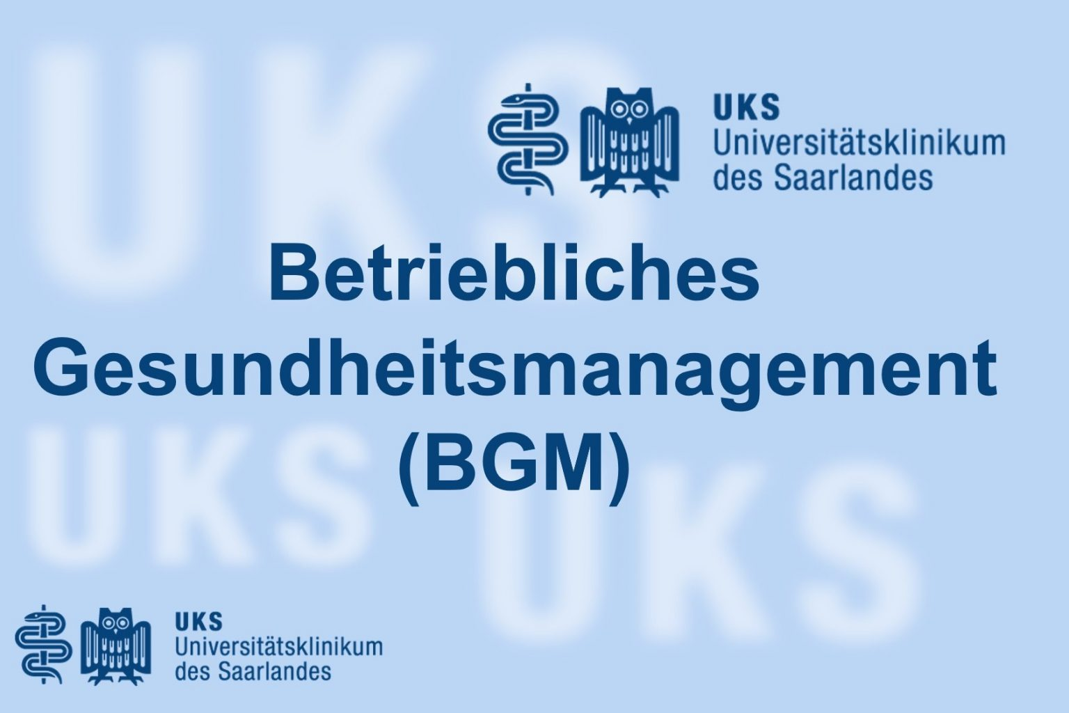 Feedback BGM UKS 1 1536x1024 1
